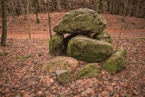 Großsteingrab im Wald
